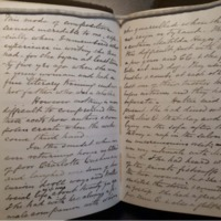 ABP Box 4 5, diary 1876. On CC and Hays_excerpt.pdf